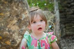 12 jas fairy