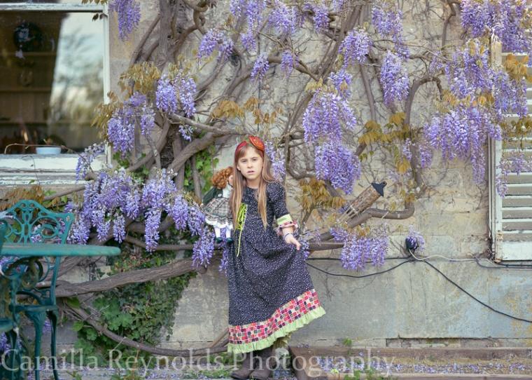 wisteria-0366-3