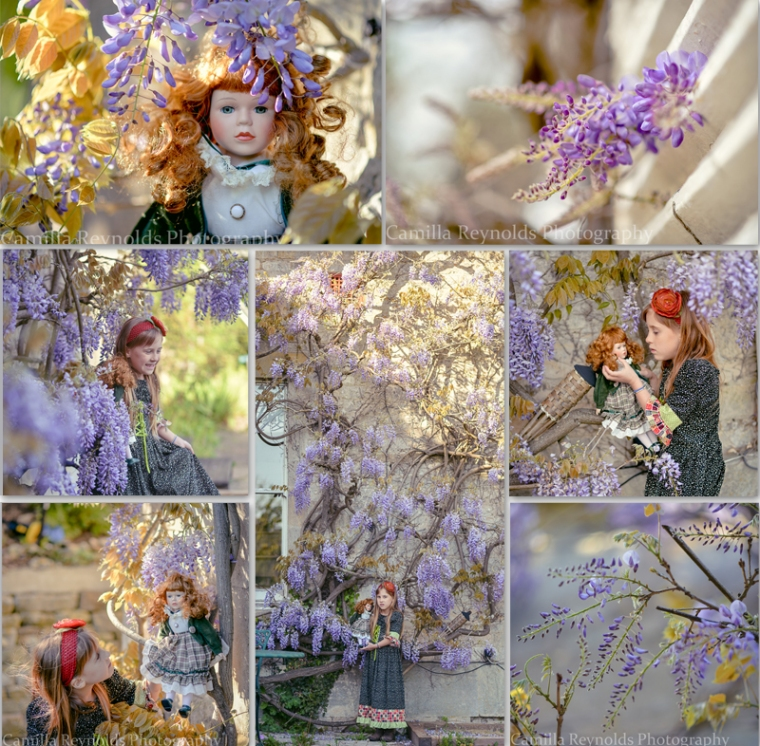 wisteria collage