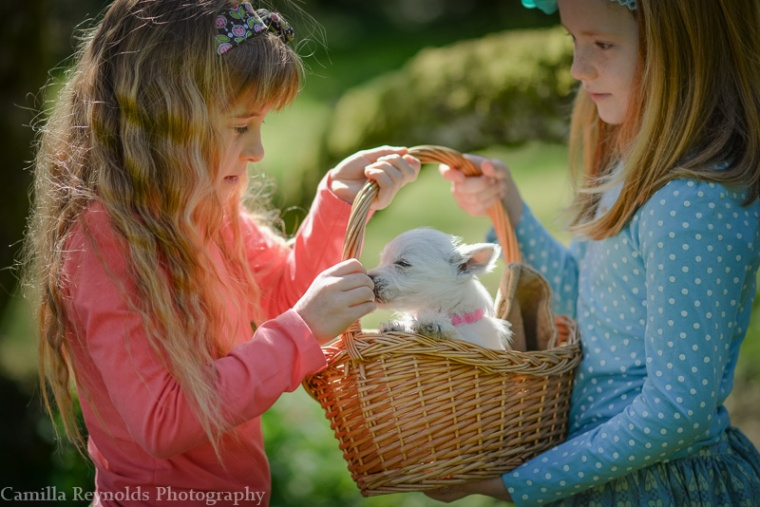 beautiful natural children photography Gloucestershire Cotswolds girls and puppy