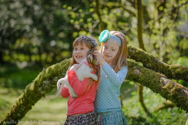 pets children outdoor photo shoot Cotswolds Gloucsetershire