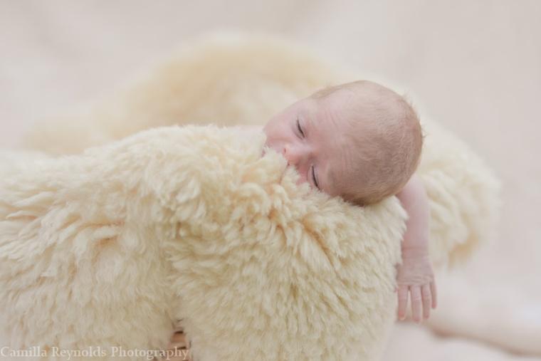 newborn baby photographers stroud family photography