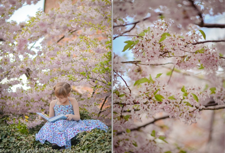 5 collage spring