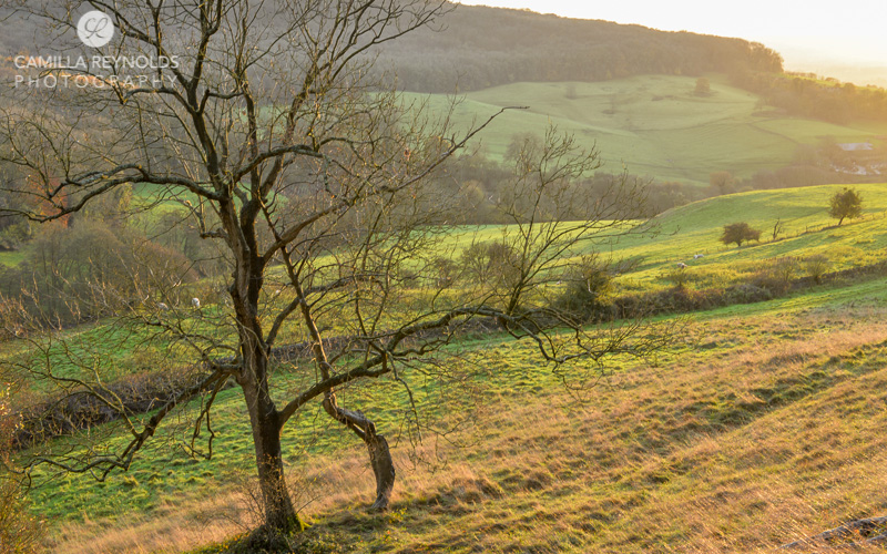 autumn countryside Cotswolds Gloucestershire photographer