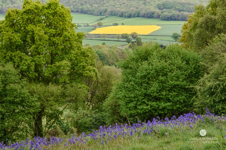 bluebell photography Gloucestershire Cotswolds