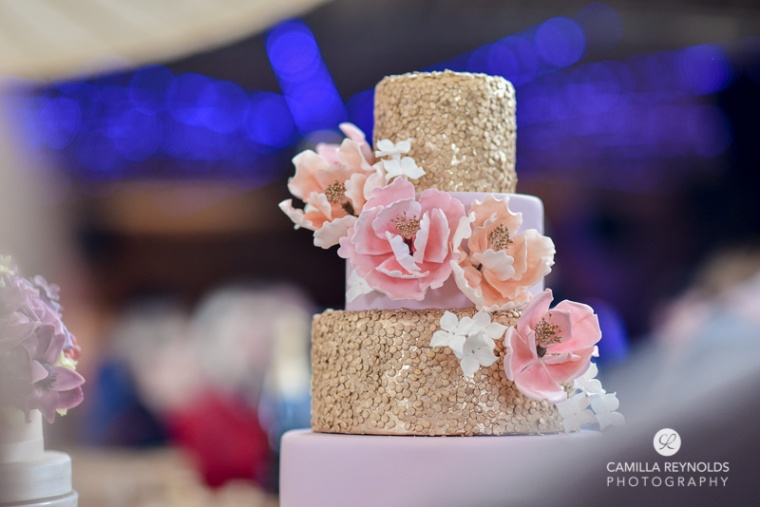 elmore court wedding photographers gold cake