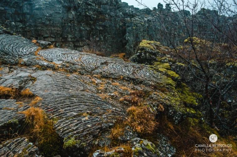 iceland camilla reynolds photography (24)