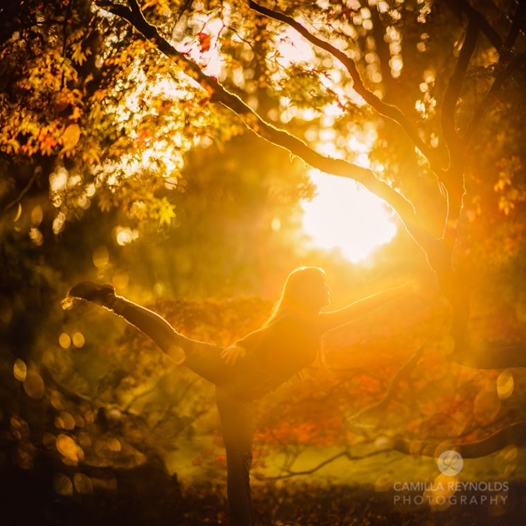 Autumn arabesque fine art sunset tree photography Cotsworlds