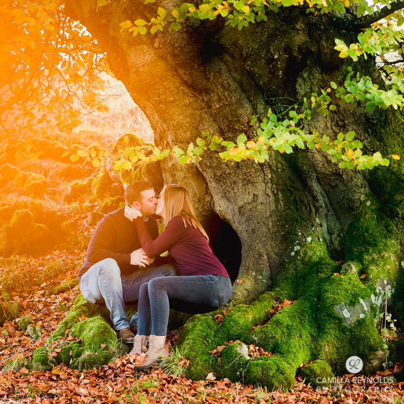 couple kissing old tree vibrant engagement photography